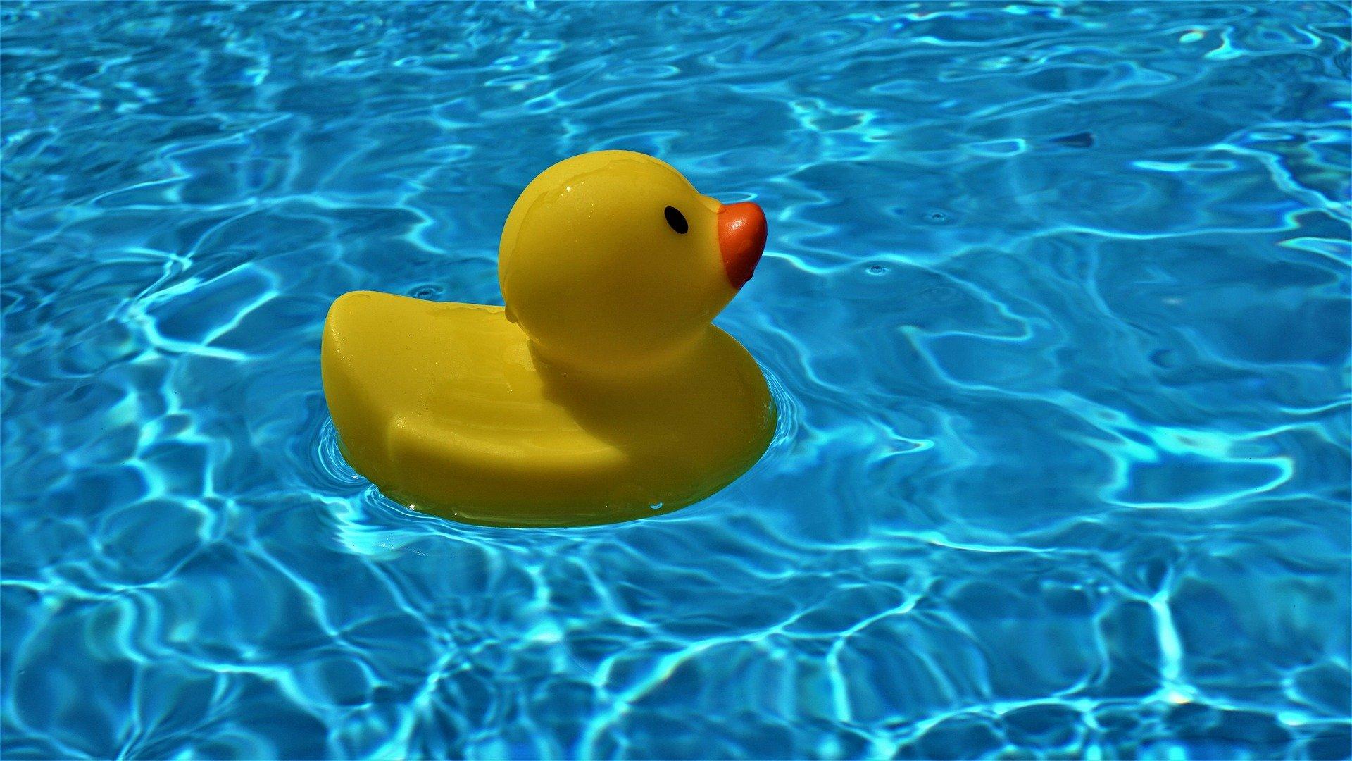 pool-5173761_1920